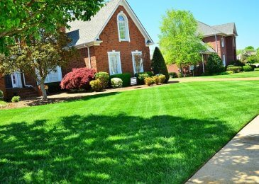 Green Lawn – Every Home Should Never Be Without