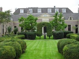 Tips for Creating Beautiful Lawn Landscape