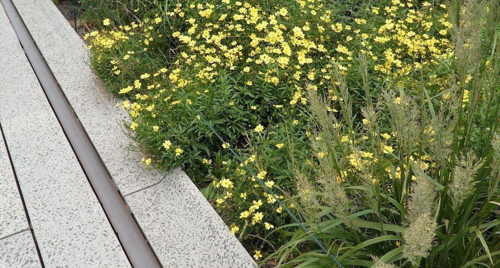 Modest DIY Garden Edging Ideas to Consider
