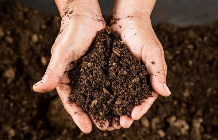 How to Determine The Composition of Soil