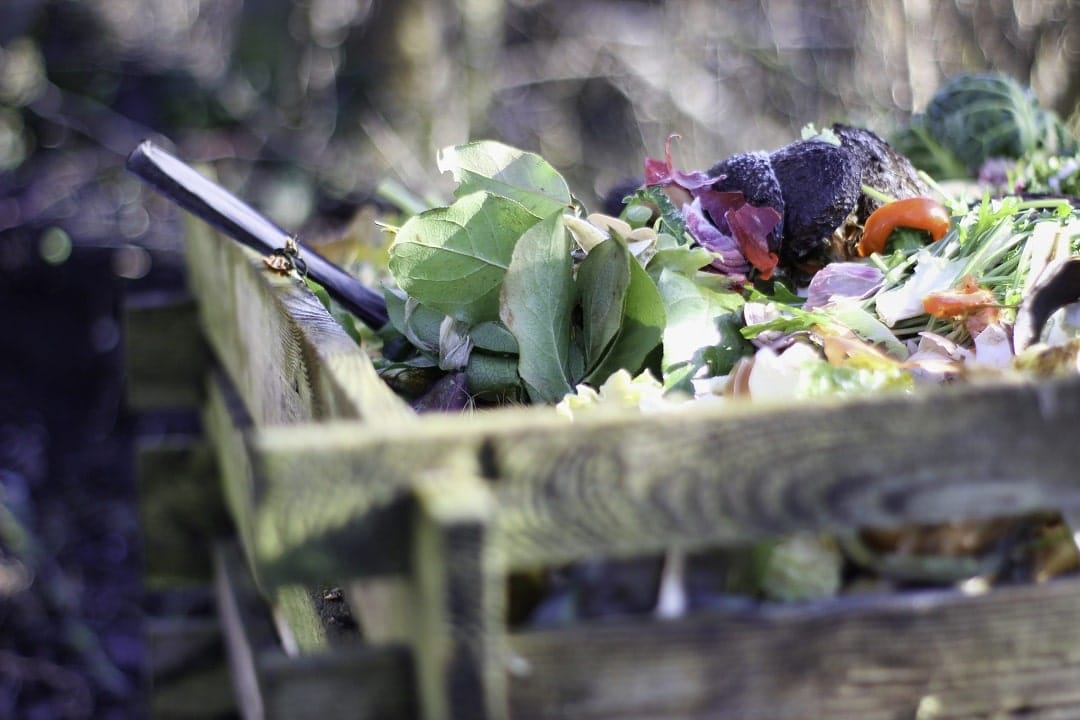 Domestic Compost How to Prepare it at Home