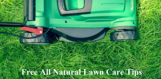 Free All Natural Lawn Care Tips