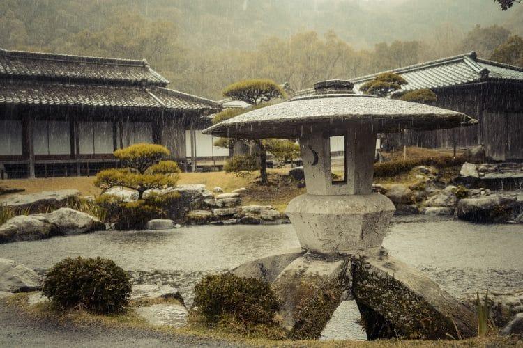 Zen Garden Basics: Learn, Grow, Build Your Own