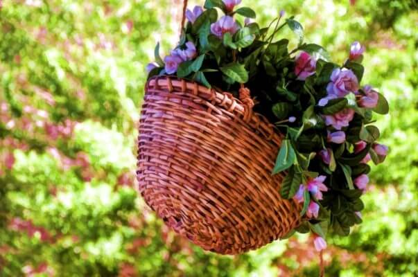 Plant a Hanging Basket Create a Hanging Basket for Curb Appeal and Color Displays