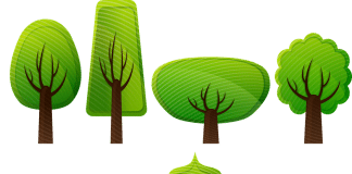 Planting Healthy Trees for Long Lives
