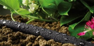 How To Save Water And Get A Greener Garden With A Soaker Hose