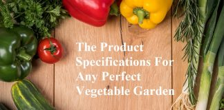 The Product Specifications For Any Perfect Vegetable Garden