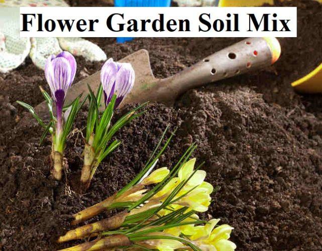 Flower Garden Soil Mix