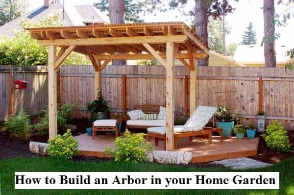 How to Build an Arbor in your Home Garden