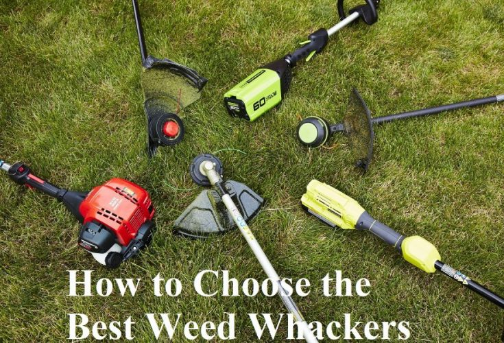 How to Choose the Best Weed Whackers