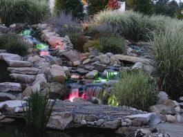 Installing Pond Lights DIY