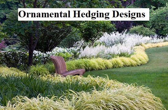 Ornamental Hedging Designs