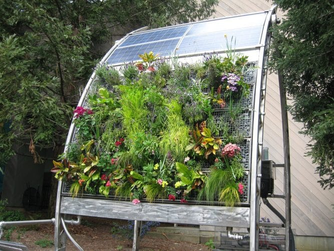Expand Your Garden's Horizons With Vertical Garden