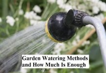 Garden Watering Methods and How Much Is Enough