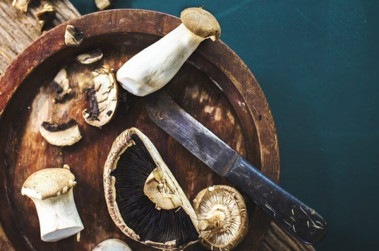 How To Harvest Mushrooms At Home Garden