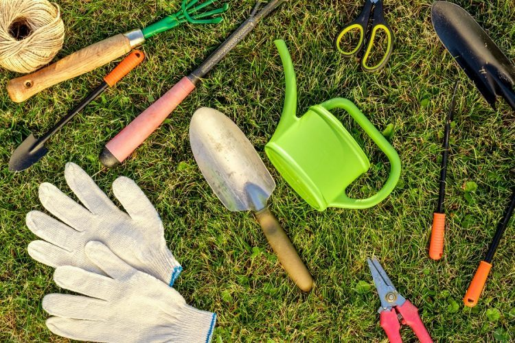 Best 15 Tools Used for Gardening works