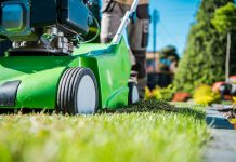 How to Kill Lawn Thatch