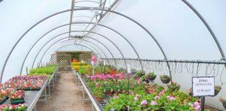 10 Beautiful Garden World Centers and Best Nurseries in Delaware