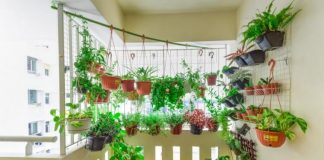 Planning a Balcony Garden