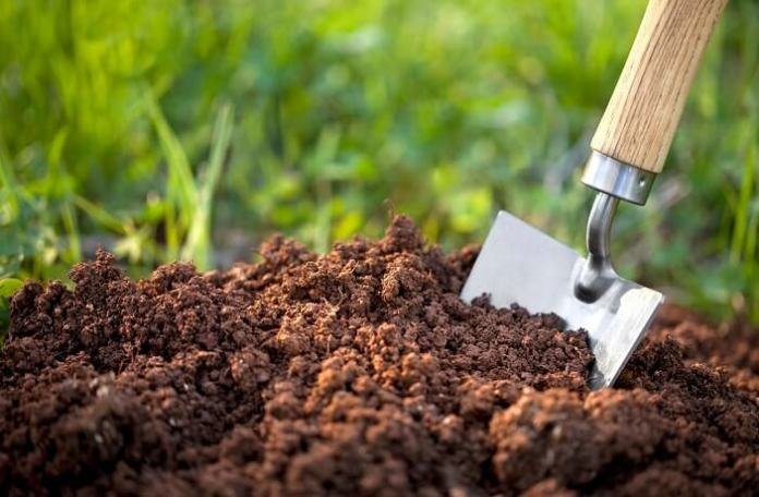 What are Different Types of Soil Have you in your Garden