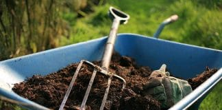 Amending Clay Soil Yes It Can Be Done