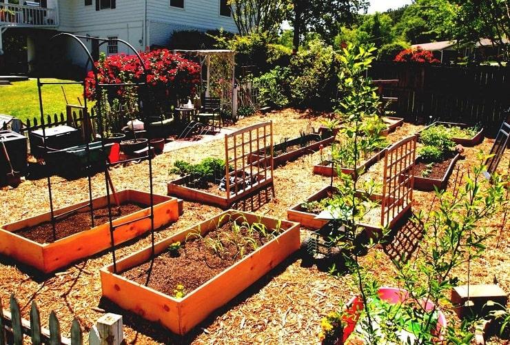 best vegetable garden layout ideas and designs | gardens