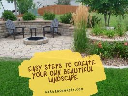 Easy Steps to Create your own Beautiful Landscape