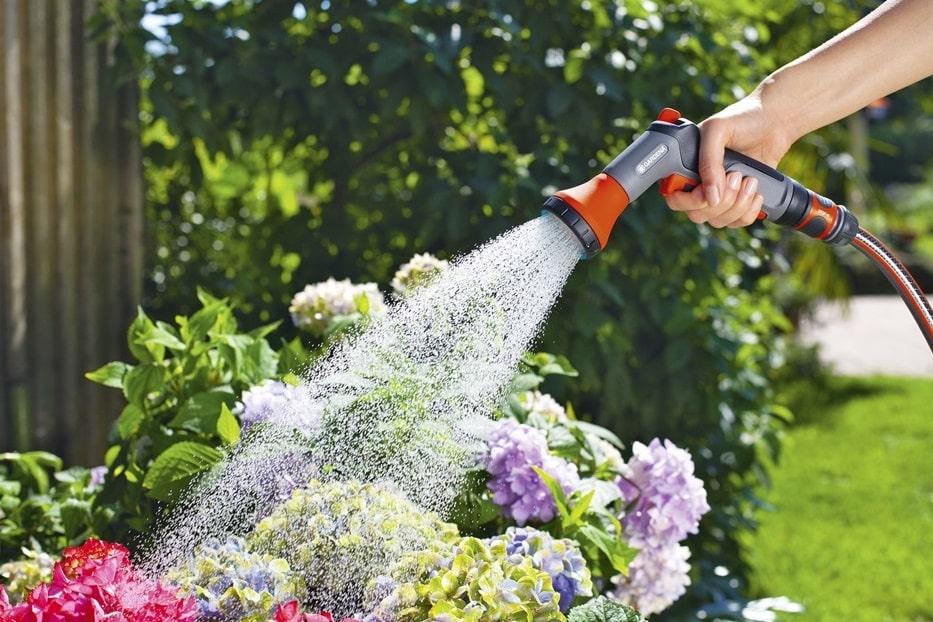 How to Watering Plants of Garden