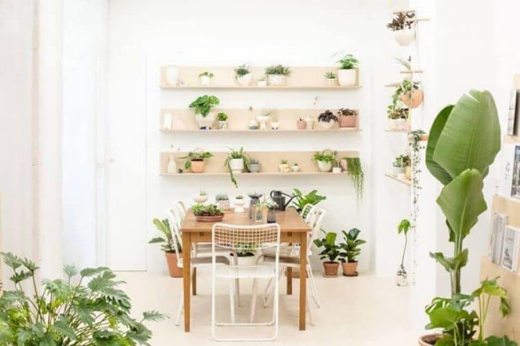 Indoor Gardening the Feng Shui Way