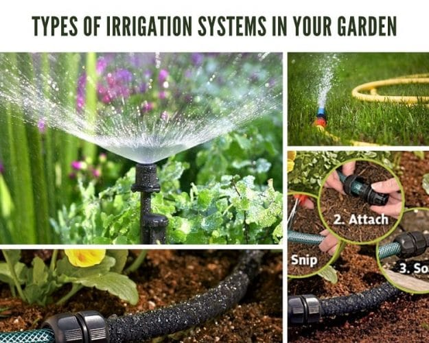Types of Irrigation Systems in your Garden