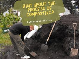 What About the Process of Composting