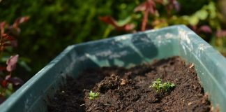 Yard Waste To Generate Garden Compost