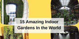 15 Amazing Indoor Gardens In the World