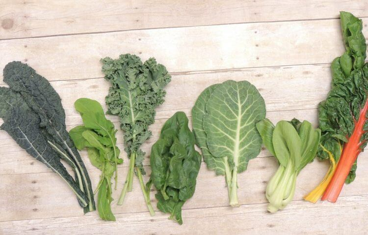 Consider Making Leafy Greens The Backbone of Your Garden