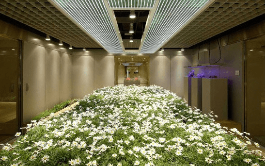 Gardens Under Tokyo Bank Vault