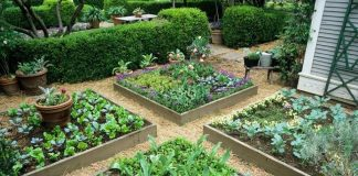 How Do You Build a Simple Raised Garden Bed