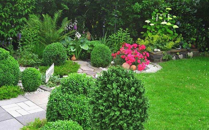 How To Beautify Your Lawn