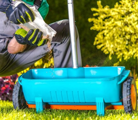 Lawn Fertilizer - Tips and Techniques