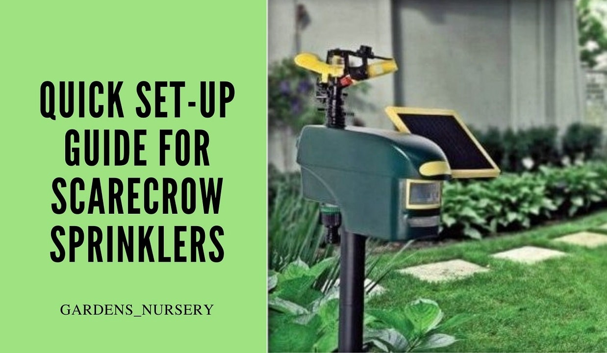 Quick Set-up Guide for Scarecrow Sprinklers