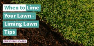 When to Lime Your Lawn - Liming Lawn Tips