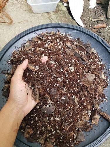 prepare mix soil