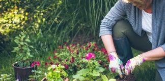 Gardening for the 5 Sense