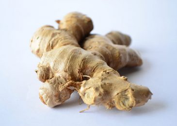 How To Grow A Ginger Plant