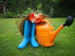 Best Shoes and Garden Clogs For Women