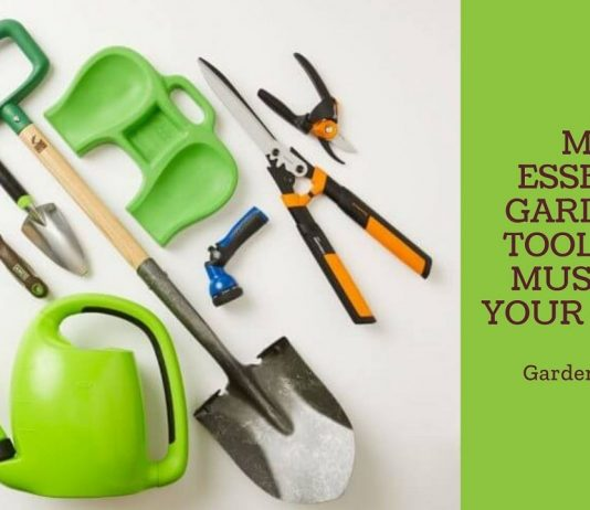 Most Essential Gardening Tools that Must Be in Your Garden