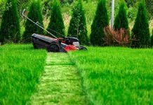 6 Tips to Start Your Lawn Care Business