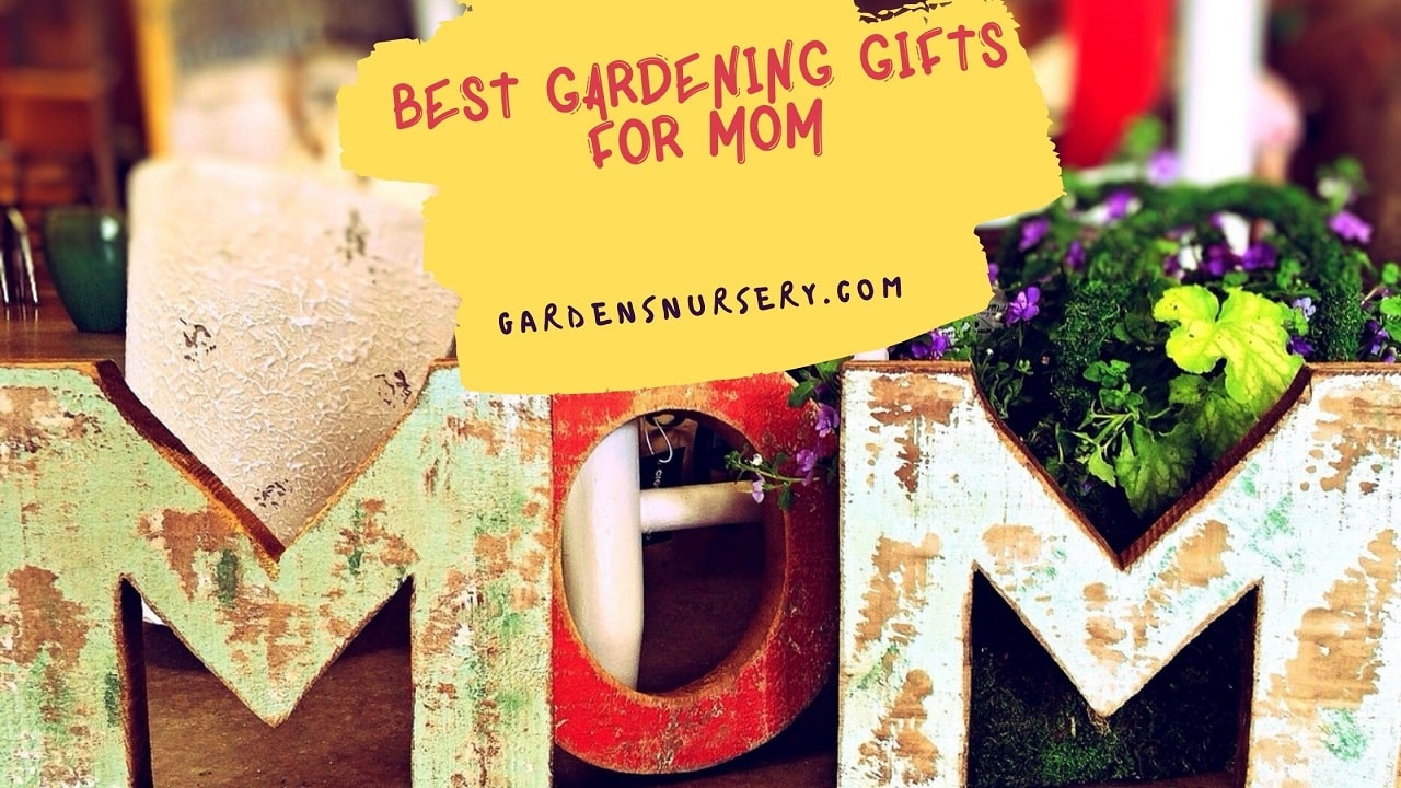 Best Gardening Gifts For Mom
