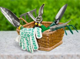 Lawn Care: 7 Gardening Tools You Need To Keep Your Plants Healthy
