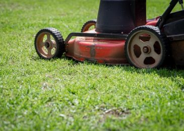 All About Ride-on Mowers