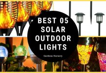 Best 05 Solar Outdoor Lights That You Can Buy Right Know